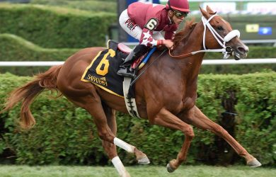 Lady Shipman winning at Saratoga (photo by Chelsea Durand of Thoroughbred Daily News)