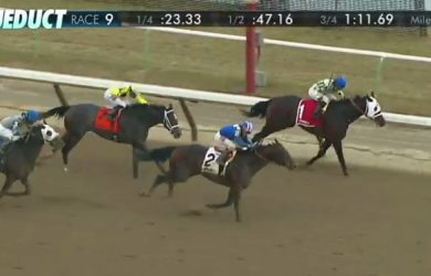 Shagaf (2) wears down Laoban (1) to get up at the wire in the Gotham Stakes at Aqueduct.