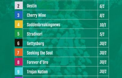 Belmont Stakes 2016 Odds