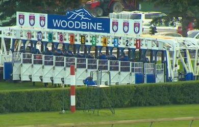 Woodbine1