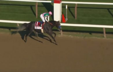 """The """"other Baffert,"""" Arrogate  wins the 2016 Travers Stakes in convincing fashion."""