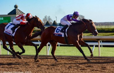 Irap broke his maiden in the Blue Grass Stakes (photo by Jordan Sigmon).