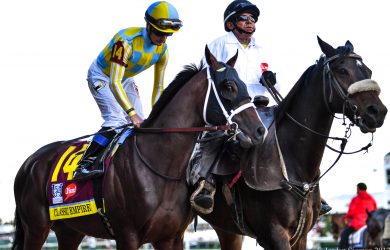 Classic Empire seeks to turn the tables on Kentucky Derby winner Always Dreaming in the Preakness Stakes (photo by Jordan Sigmon).
