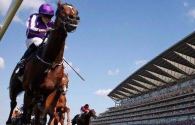 Highland-Reel_Ascot-Racecourse1