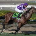 Highland-Reel_Jim-Safford