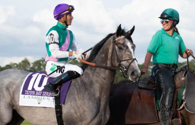 2019 Tampa Bay Derby winner Tacitus. Photo by Taylor Gross
