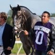 Tacitus and Jose Ortiz Tampa Bay Stakes GII (1 of 1)-4