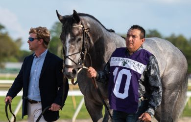 Tacitus and Jose Ortiz Tampa Bay Stakes GII (1 of 1)-4