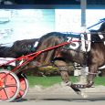 Wiggle It Jiggleit. Photo: Melissa Simser-dovino, StandardbredCanada