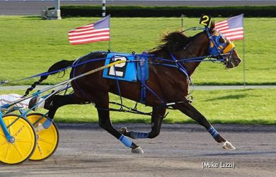 McWicked - Photo courtesy of Mike Lizzi from harnesslink.com
