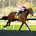 Kentucky Derby Horses: 347 Nominated to Triple Crown Races