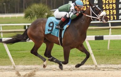 kentucky-derby-preps-betting-sam-davis-stakes