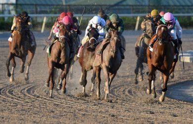 Kentucky Derby Qualifiers: Fountain of Youth Favorites
