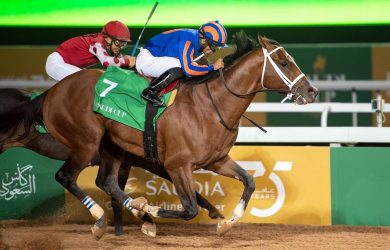 Maximum Security Best Horse: Wins Inaugural Saudi Cup