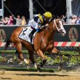 Gulfstream Betting Trends: 5 Track Tips to Help You Win!