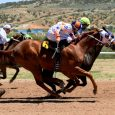 Japan Horse Betting: High-Quality Races Every Weekend