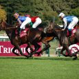 Oaklawn Park Betting: Eight Rings, Bellafina are Saturday's Favorites