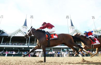 Shedaresthedevil  - Courtesy of Churchill Downs/Coady Photography.