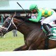 Arklow Horse Kentucky Downs