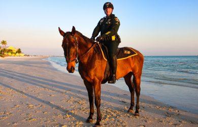 Deputy Maverick