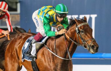 Military law credit by Dubai Racing Club