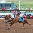 Kj Desparado - Photo Courtesy of Jake Rogers Courtesy of Ruidoso Downs Race Track