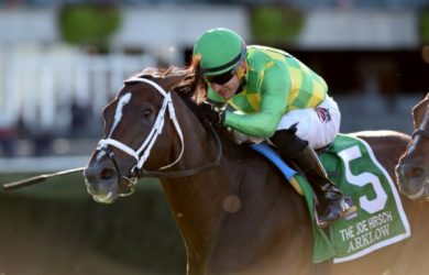 Arklow at the Joe Hirsch Stakes - Photo Courtesy of  Chelsea Durand